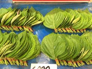 韓国の市場で売られているえごまの葉