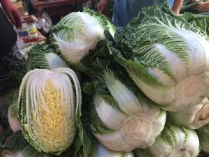 キムチに使う白菜